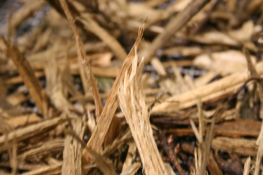 Wood Content Woody Biomass