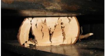 Crushed Roundwood