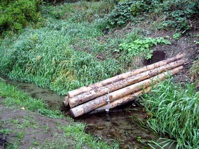 Roundwood Hylebos
